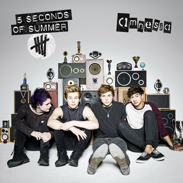 5 Seconds Of Summer  Amnesia 2014 Video Music Awards