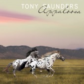 Tony Saunders - The Lady in My Life