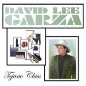 David Lee Garza - Tengo Ganas