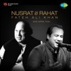 Nusrat & Rahat Fateh Ali Khan and Other Hits