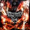 Terminator - Darkside Pioneer artwork
