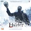 Haider (Original Motion Picture Soundtrack)