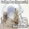 Detroit Lions - Single