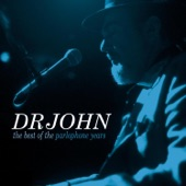 Dr John - I Ate Up The Apple Tree