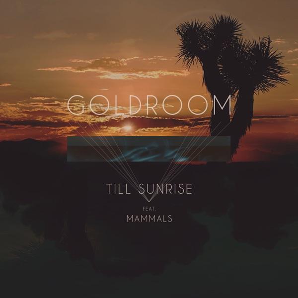 Till Sunrise (feat. Mammals)