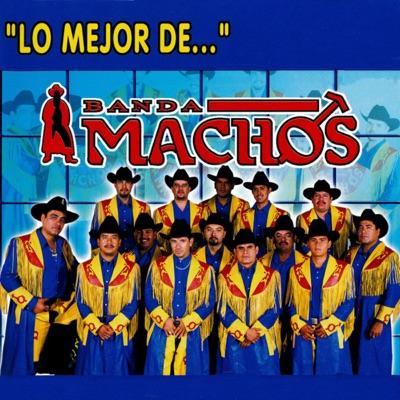 Lo mejor de ... Banda Machos - Banda Machos