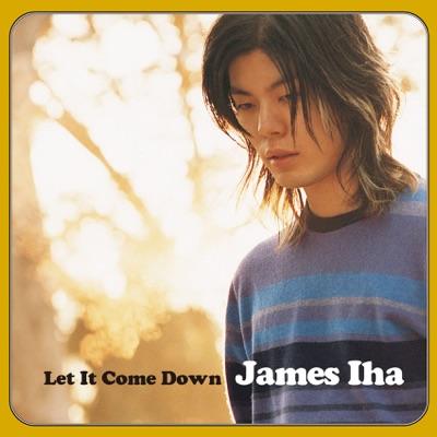 Let It Come Down - James Iha