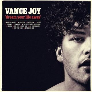 Vance Joy: Riptide
