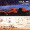William Orbit - Last Lagoon artwork