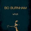 what. - Bo Burnham