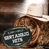 Sertanejo Hits ジャケット画像
