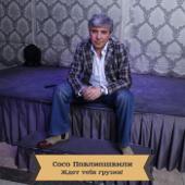 Soso Pavliashvili