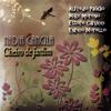Nadia Cancila - Meu Castigo (feat. Alfredo Paixão, Mike Moreno, Ettore Carucci & Enrico Morello) kunstwerk