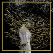Forest Swords - The Plumes