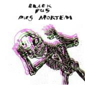 Black Pus - Heebee Geebees