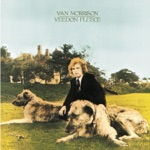 Van Morrison - Who Was That Masked Man