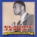 Elmore James - Blues Before Sunrise