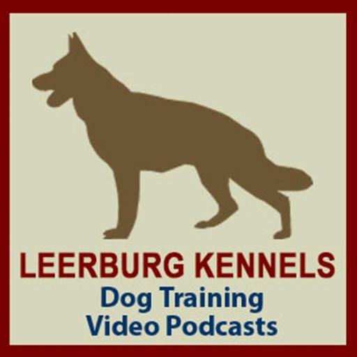 dog training podcast