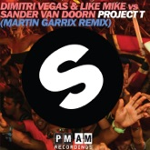 Project T (Martin Garrix Remix Edit) - Single