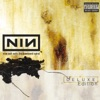 The Downward Spiral (Deluxe), Nine Inch Nails