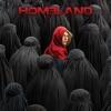 Homeland, Season 4 - Synopsis and Reviews
