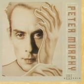Peter Murphy - All Night Long (Single Edit)
