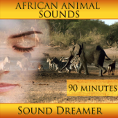 African Animal Sounds - 90 Minutes