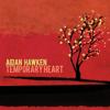 Aidan Hawken - Into the Sea artwork