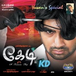 kedi movie download 2006