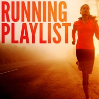 Various Artists - Running Playlist