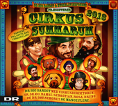 Cirkus Summarum 2013