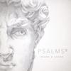 Shane & Shane - Psalms, Vol. 2  artwork