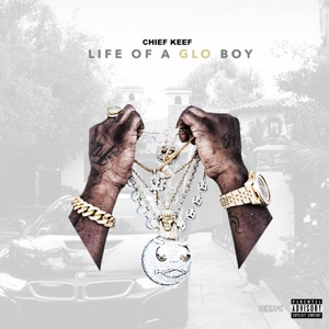 Life of a GLO Boy Mp3 Download