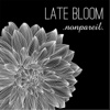 Late Bloom - EP - Nonpareil