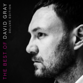 The Best Of David Gray (Deluxe Edition)-David Gray