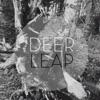 Deer Leap - Here Home Album