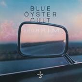 Blue Öyster Cult - Moon Crazy