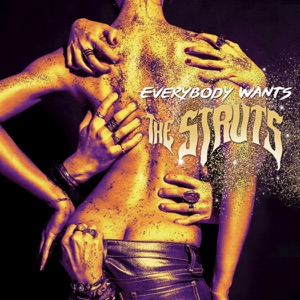 Everybody Wants Mp3 Download