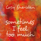 Cosy Sheridan - I'm Afraid the Song Is Broken
