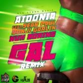 Nuh Boring Gal (feat. Sean Paul & Bunji Garlin) [Remix] - Single