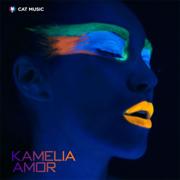 Amor (Radio Edit) - Kamelia - Kamelia