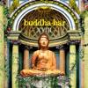 Buddha Bar XVIII, Buddha Bar