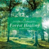 Silent Forest-Takashi Kokubo