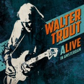 Walter Trout - Rock Me Baby (Live)