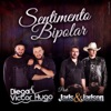 Sentimento Bipolar feat Jads Jadson Single