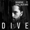 Dive (feat. Enya & Alex Aris)