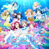 Koini Naritai Aquarium