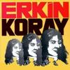 Erkin Koray - Mesafeler artwork
