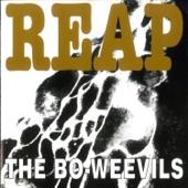 The Bo-Weevils - Head Full