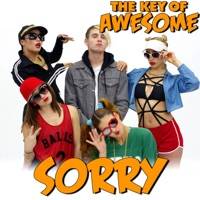 The Key of Awesome - Sorry - Parody of Justin Bieber's